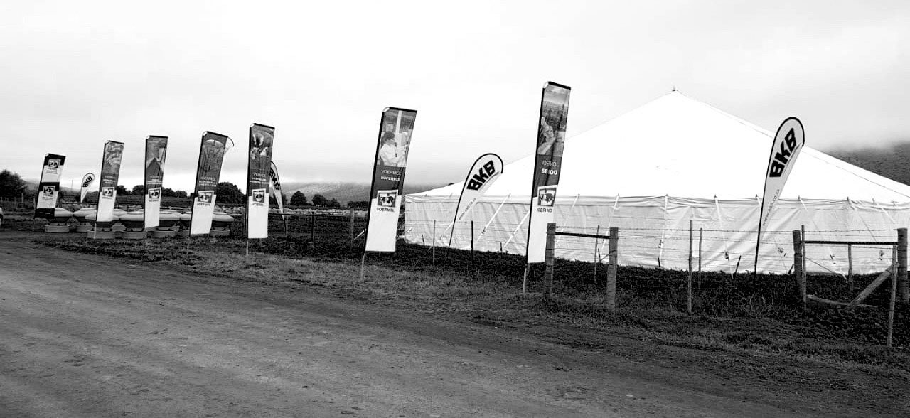 Andrew Jordaan Jr's sheep farmers' day was held in a large white tent on their planted pastures.